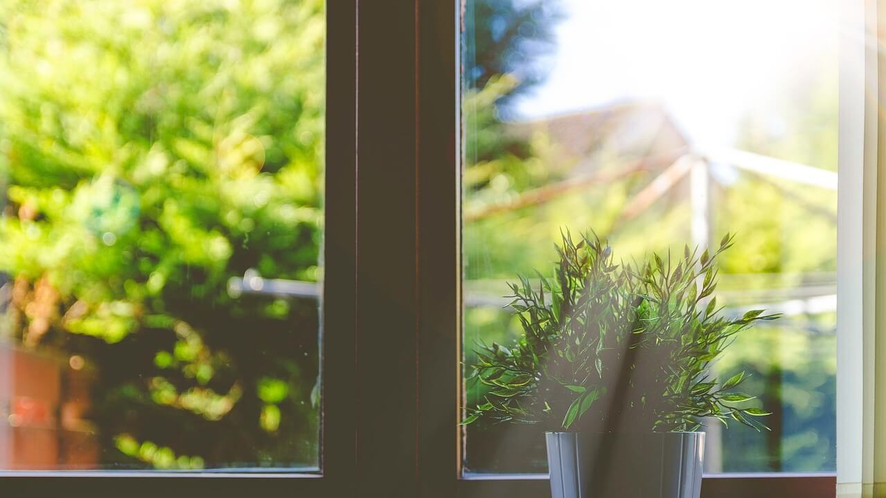 Could the Sun Impact Productivity When You Are Working From Home?